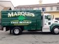 Marquis Tree Service